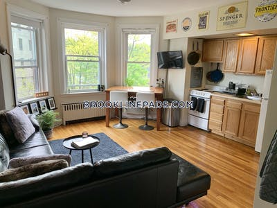 Brookline 1 Bed 1 Bath BROOKLINE- WASHINGTON SQUARE $1,750  Washington Square - $1,750 No Fee
